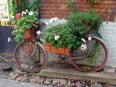 Tout est fleuri à Lyons-la-Forêt ! ©Leslie LEFEBVRE