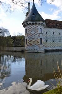 Cygnes devant le château