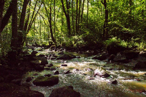 En contrebas : la rivière