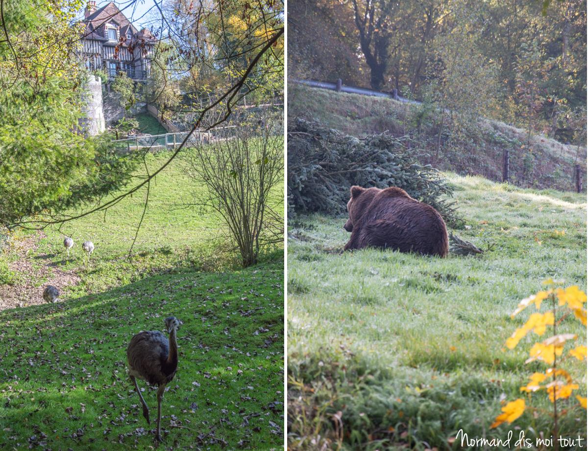 Les animaux du Zoo de Cerza