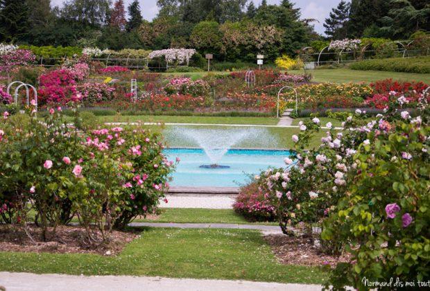 Roseraie du parc floral de Caen