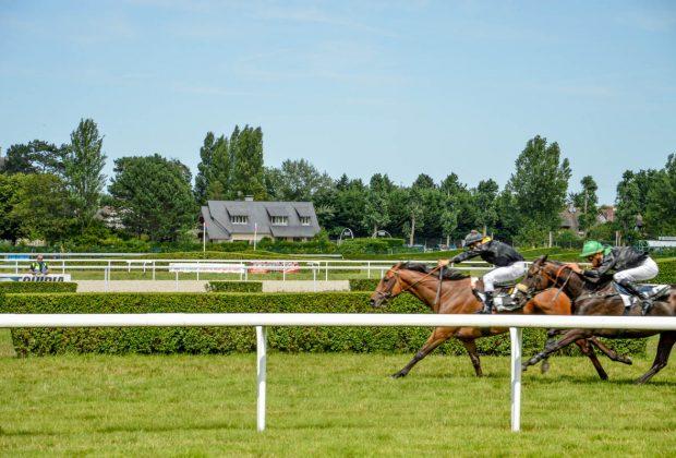Une après-midi aux courses de chevaux