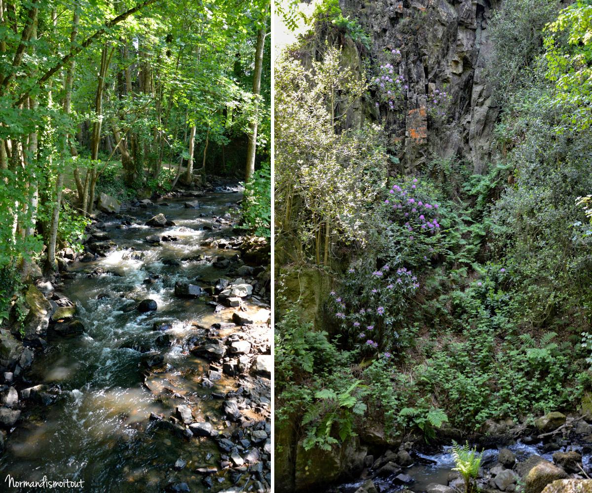 Randonnée entre rivière, roches et nature luxuriante à Mortain