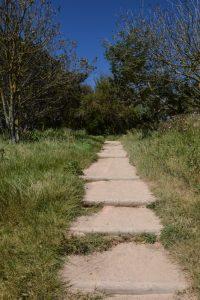 Chemin d'accès au panorama à Veules-les-Roses