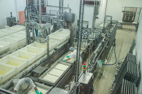 La fabrication du fromage
