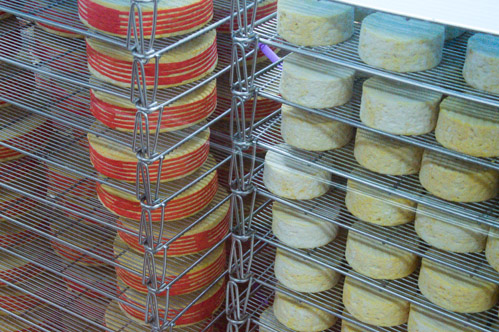 Affinage des fromages